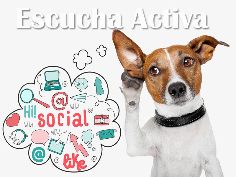 ¿Qué es la Escucha Activa en Redes Sociales?