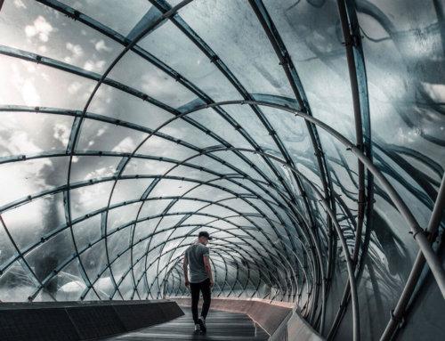 Identidad Digital: Trazabilidad